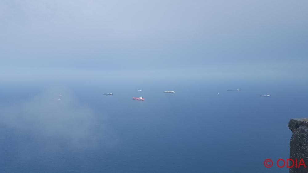 gibraltar 7 - (Лабрад..) Гибралтар